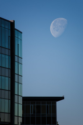 A composition of Moon and Buildings.
