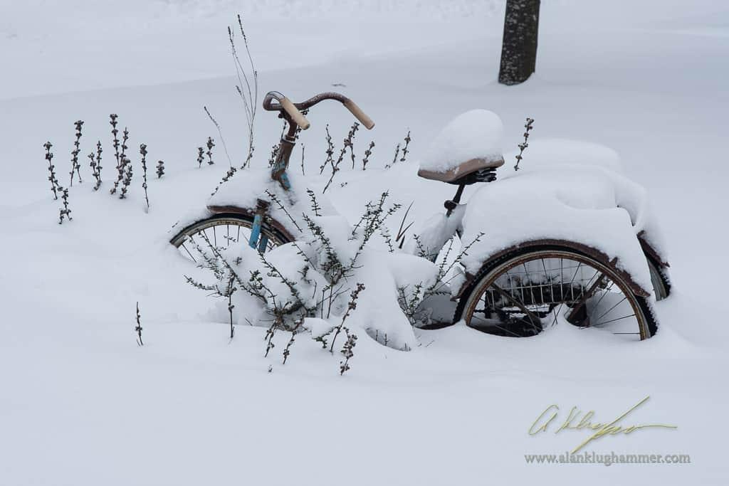 Snow Day – 2020